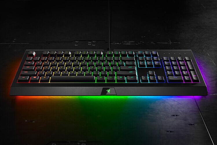 Razer Cynosa Chroma Gaming Tastatur Test Es Muss Ja