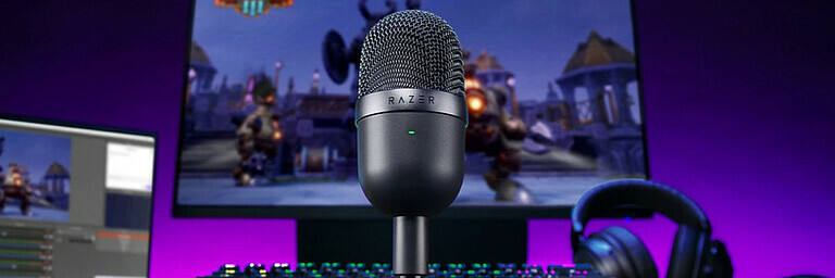 Razer Seiren Mini (Streaming-Mikrofon) - Review