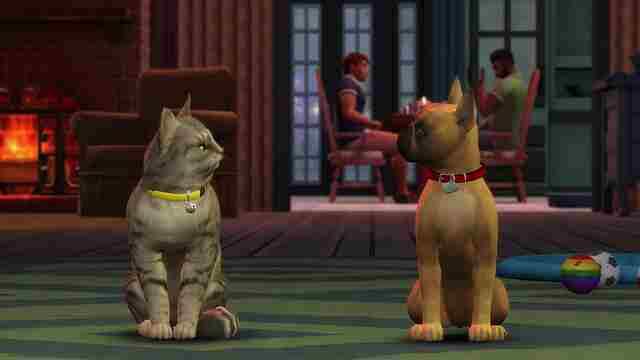 Die Sims 4 Hunde Und Katzen Test Tierisches Zusammenleben