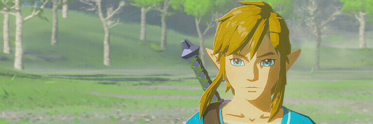 The Legend of Zelda: Breath of the Wild – Special